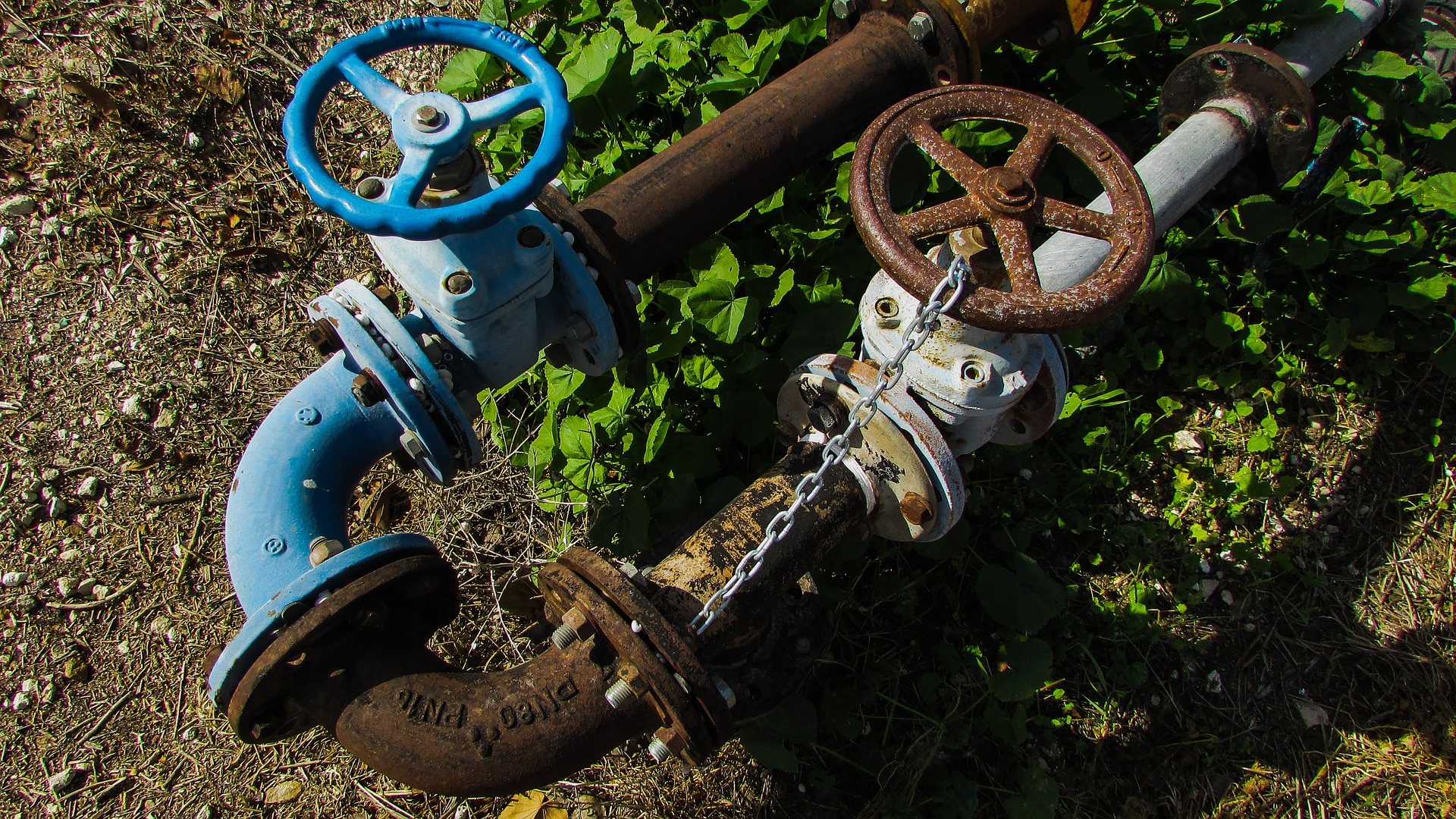 Plumbing Basics for Landlords: Landscaping and Repairs
